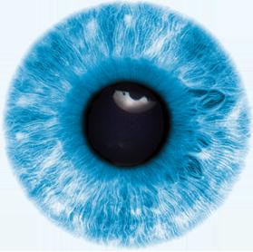 vision care limavady