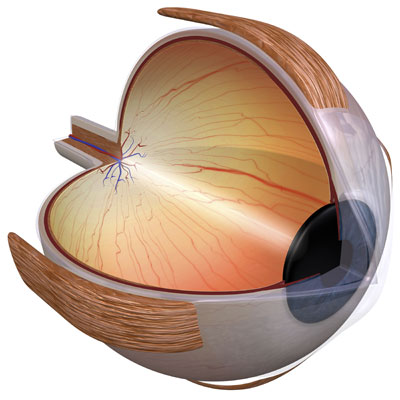 Requirements for LASIK Los Angeles